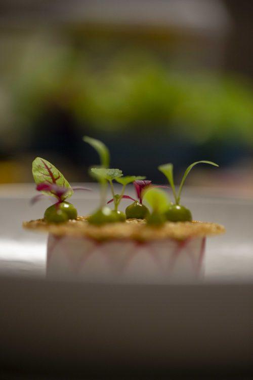 Cuisines restaurant L'Orchidée